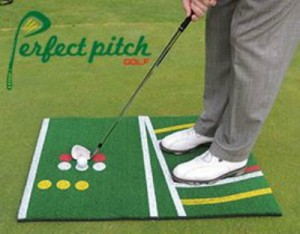 Perfect Pitch Pic