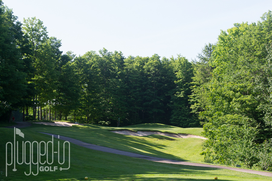 Treetops Masterpiece Golf Course (27)