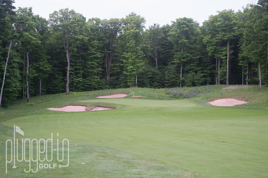 Treetops Tradition Golf Course (8)