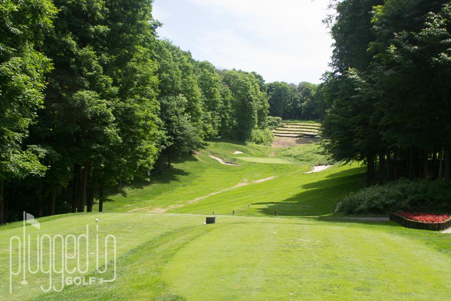 Treetops Threetops Golf Course (10)