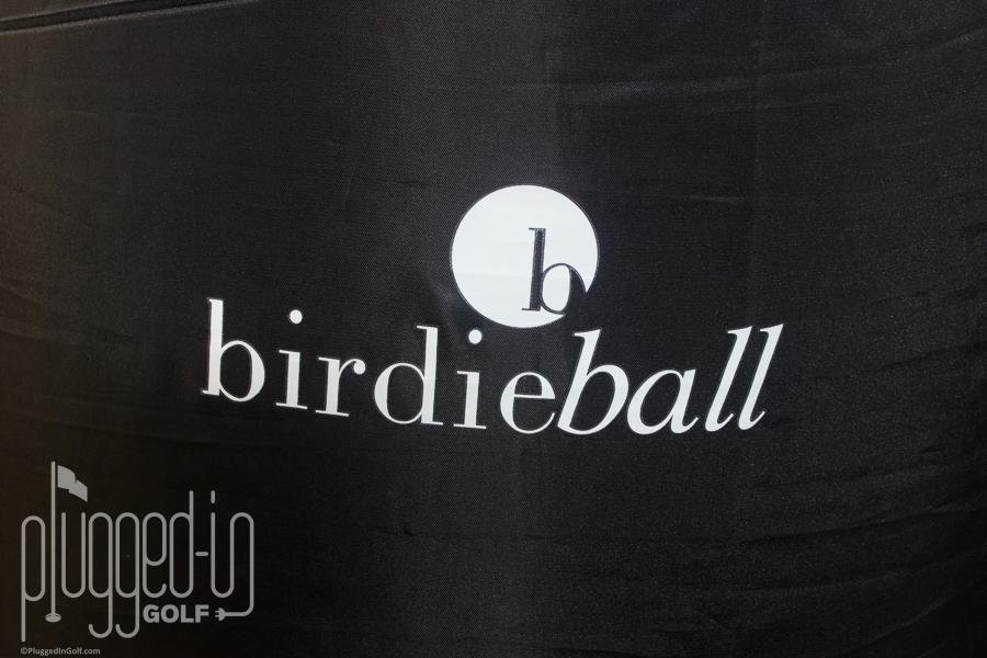 BirdieBall Putting Green (2)