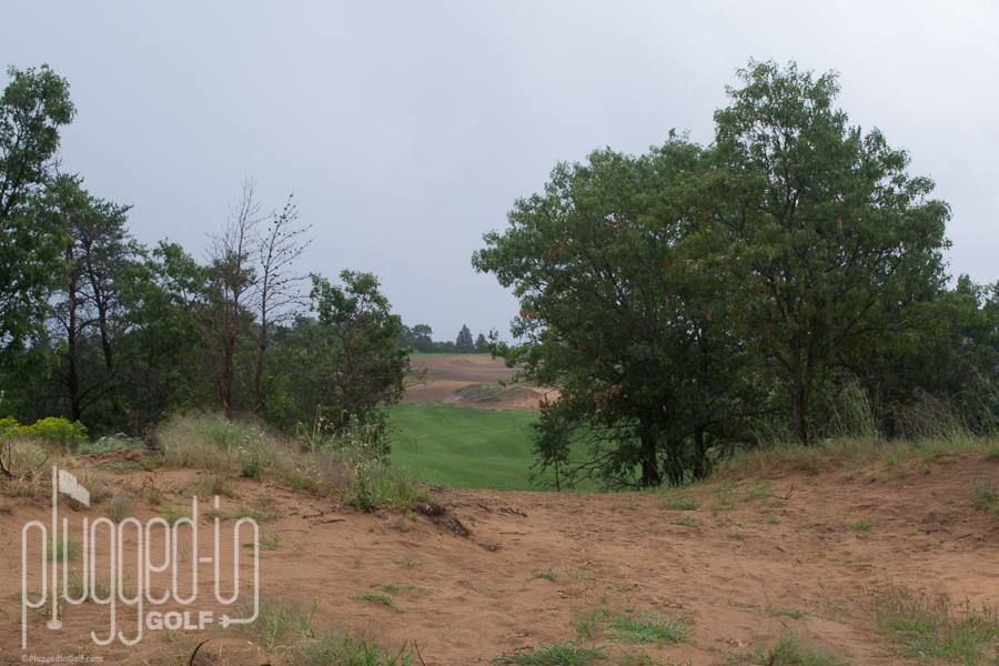 #9 through a gap in the trees