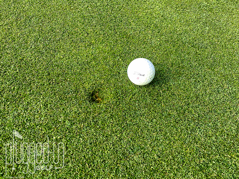 Fix Your Ball Marks!