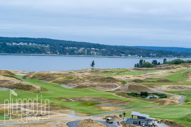 Chambers Bay Golf Course_0002