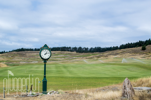 Chambers Bay Golf Course_0014