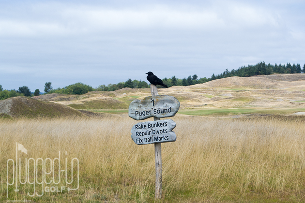 Chambers Bay Golf Course_0025