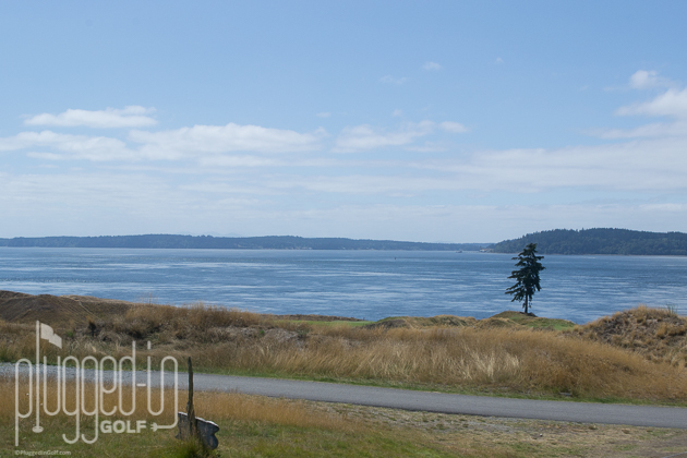 Chambers Bay Golf Course_0046