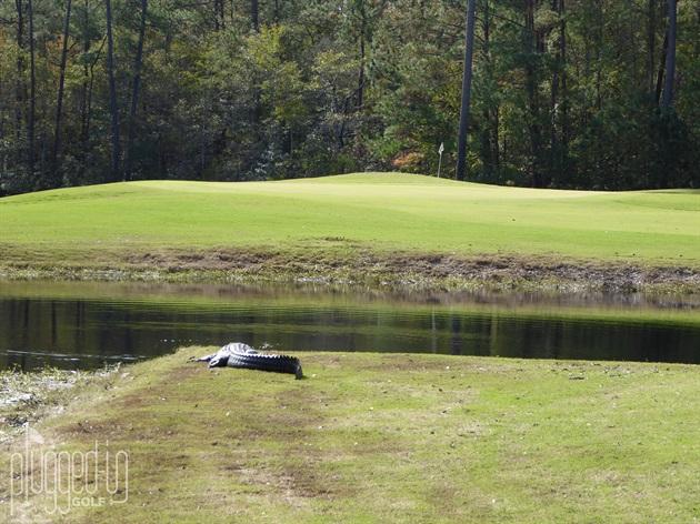mystical-golf-post-hurricane5