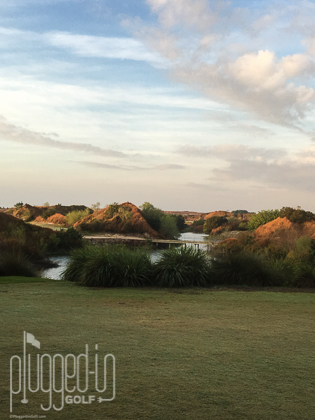 Streamsong Blue_4535