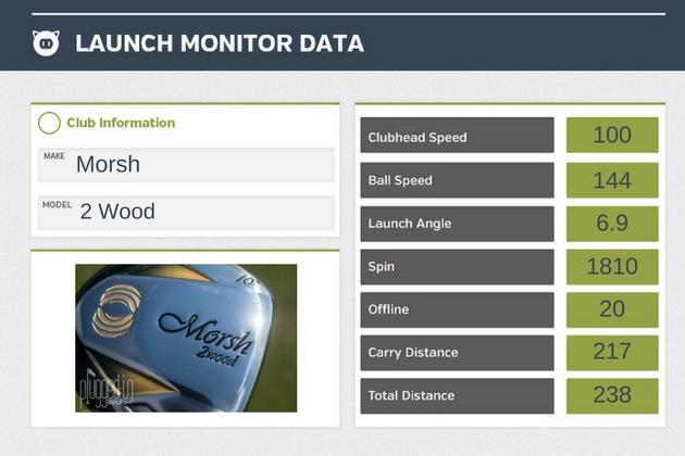 Morsh 2 Wood LM Data