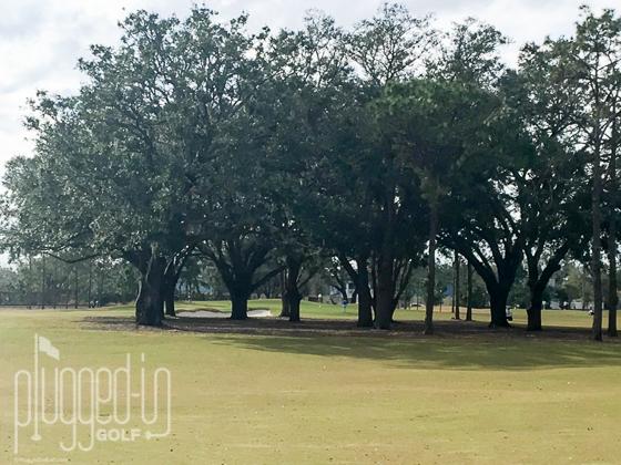 Winter Park Golf Course_7699